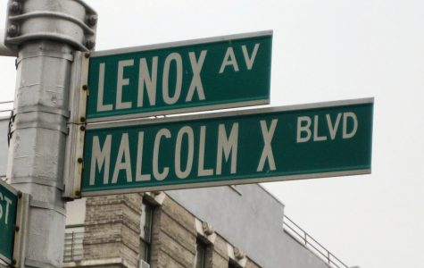 A Glance at Malcolm X's Autobiography and My Journey Towards It